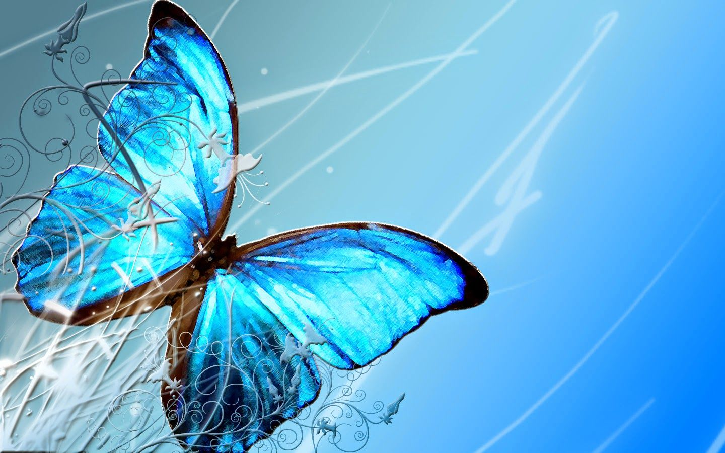 Free Butterfly Desktop Backgrounds Love Butterfly Images