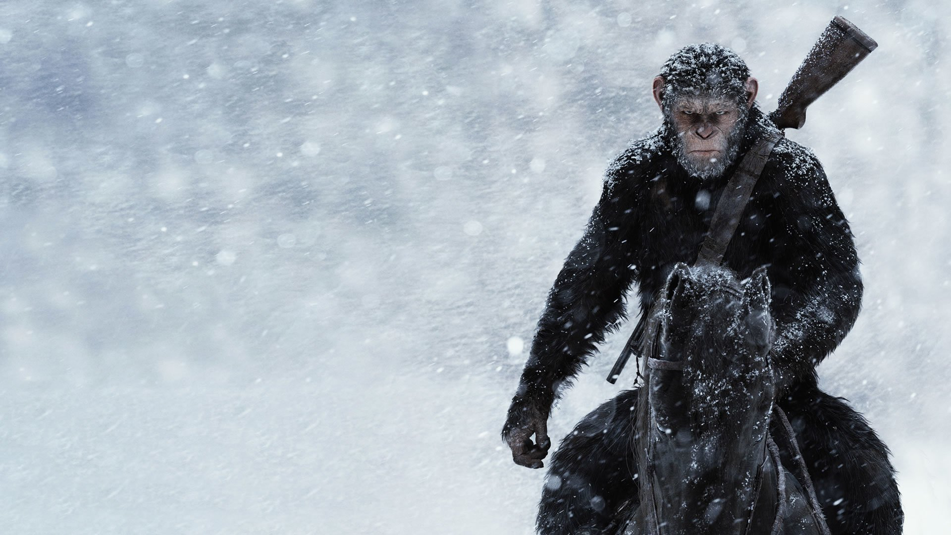 Hd Wallpaper War For The Planet Of The Apes Official Poster